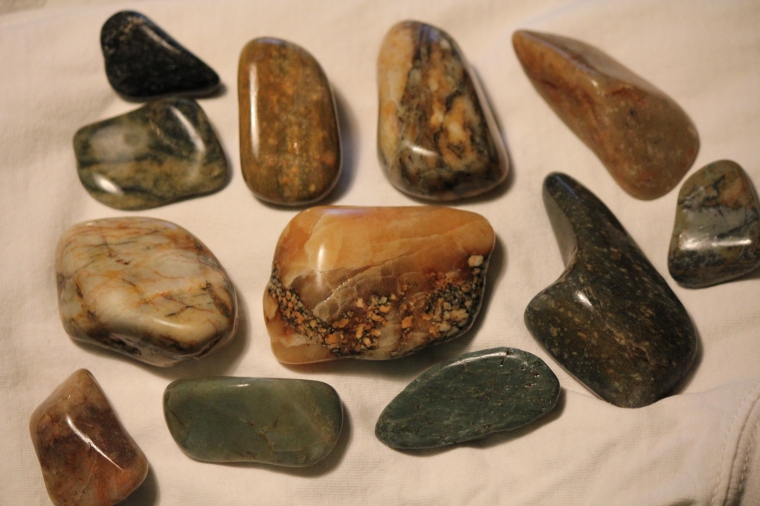 A few petrified wood pieces I took out of coarse grind in my rotary rock tumbler. They look a whole lot better to me now!