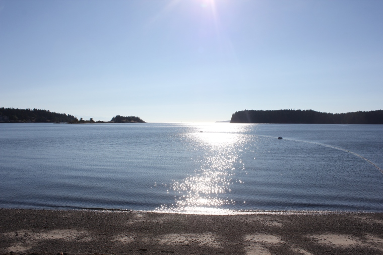 This is one of the most populated beaches in Nanaimo but it's not populated with rock hounders. Beautiful sunny, windless morning.