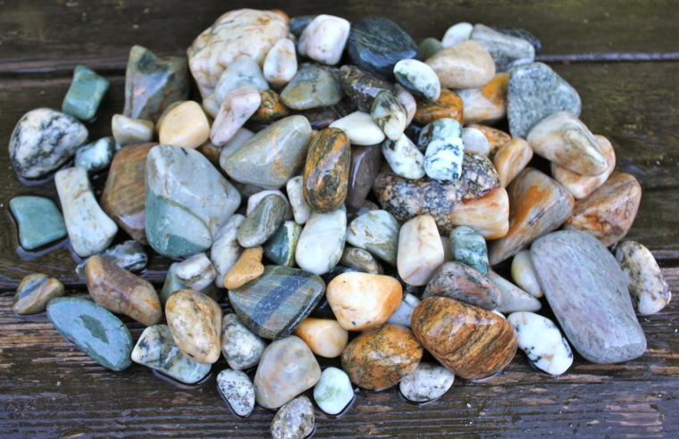 Gneiss, quartz, river rock, petrified wood, and generally a misc pile of river finds.
