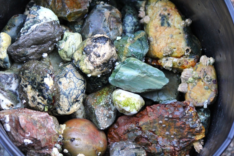 The beach rock haul. Lots of variety in here, lots to throw in the rock tumblers.