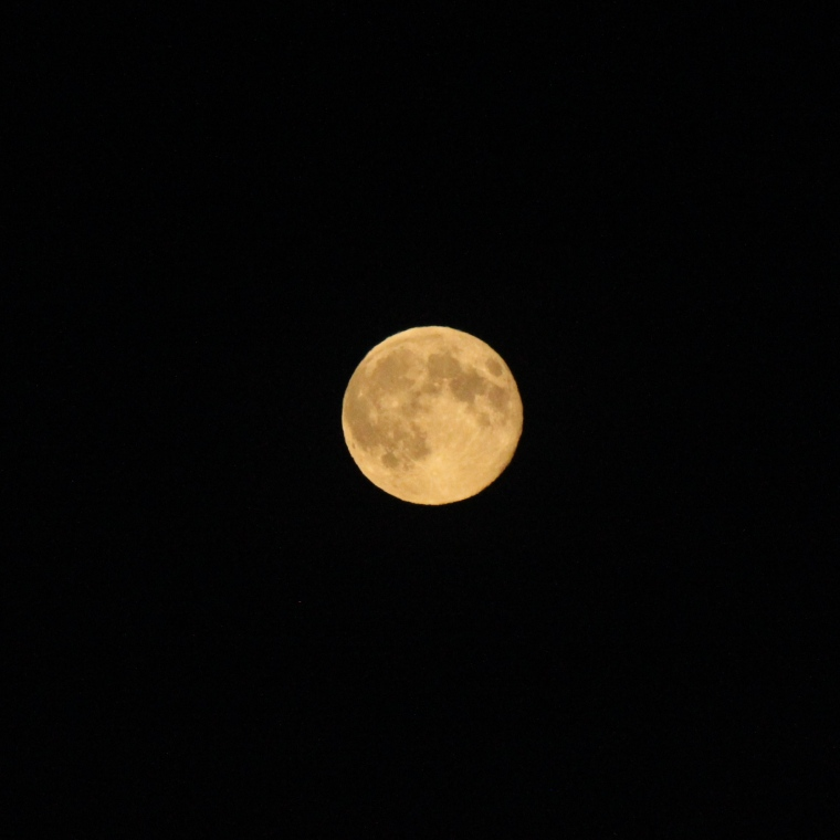 I don't know how the manual setting on my camera works but I know it's the only way I can get a clear picture of the moon.