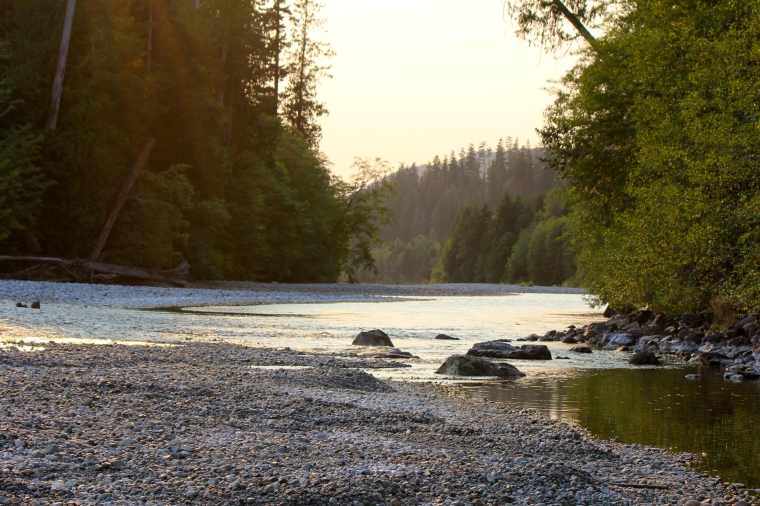 My location, some river by the town of Woss on Vancouver Island.