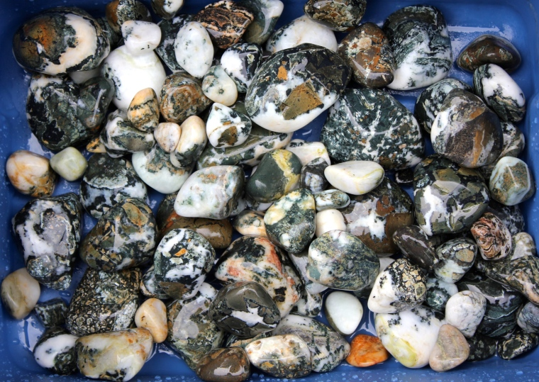 All of the Vancouver Island Dallasite from my two rock tumbler barrels.