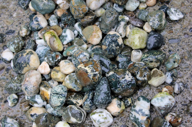 Rough Dallasite, Flowerstone porphyry and other beach rocks.