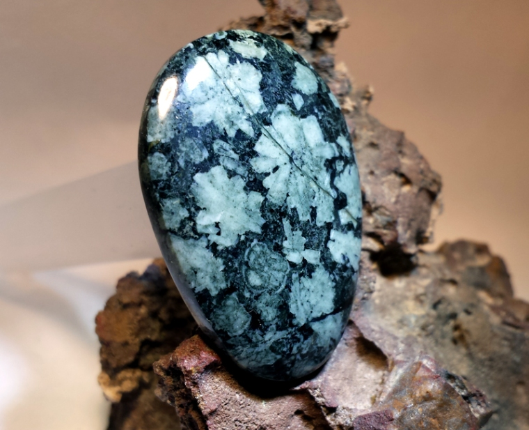 Beautiful Flowerstone cabochon from Tommy Lay, the first piece I self-collected and got worked by a professional.