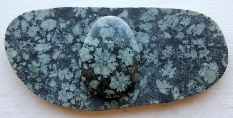 A cabochon and slab of Flowerstone from Vancouver Island.