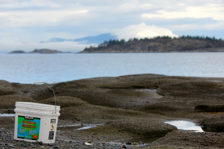 Low tide on the east coast of Vancouver Island.